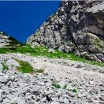 Planinski izlet na Kokrsko sedlo